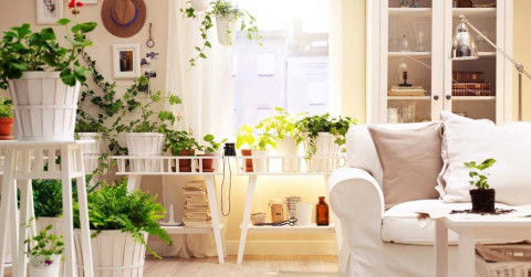 Clearing Clutter? Where to Donate, Recycle and Sell Stuff in SA ...