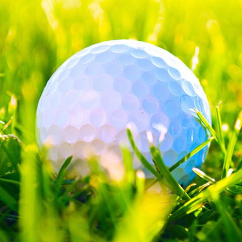 Bastion Primary School Golf Day