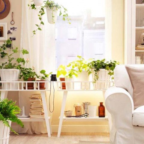 personalise rental house apartment inexpensive cheap