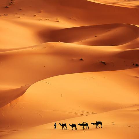 Sahara desert largest storage spaces
